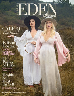 calico the band the eden magazine cover