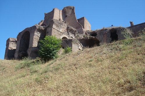 Ancient Roman Forum