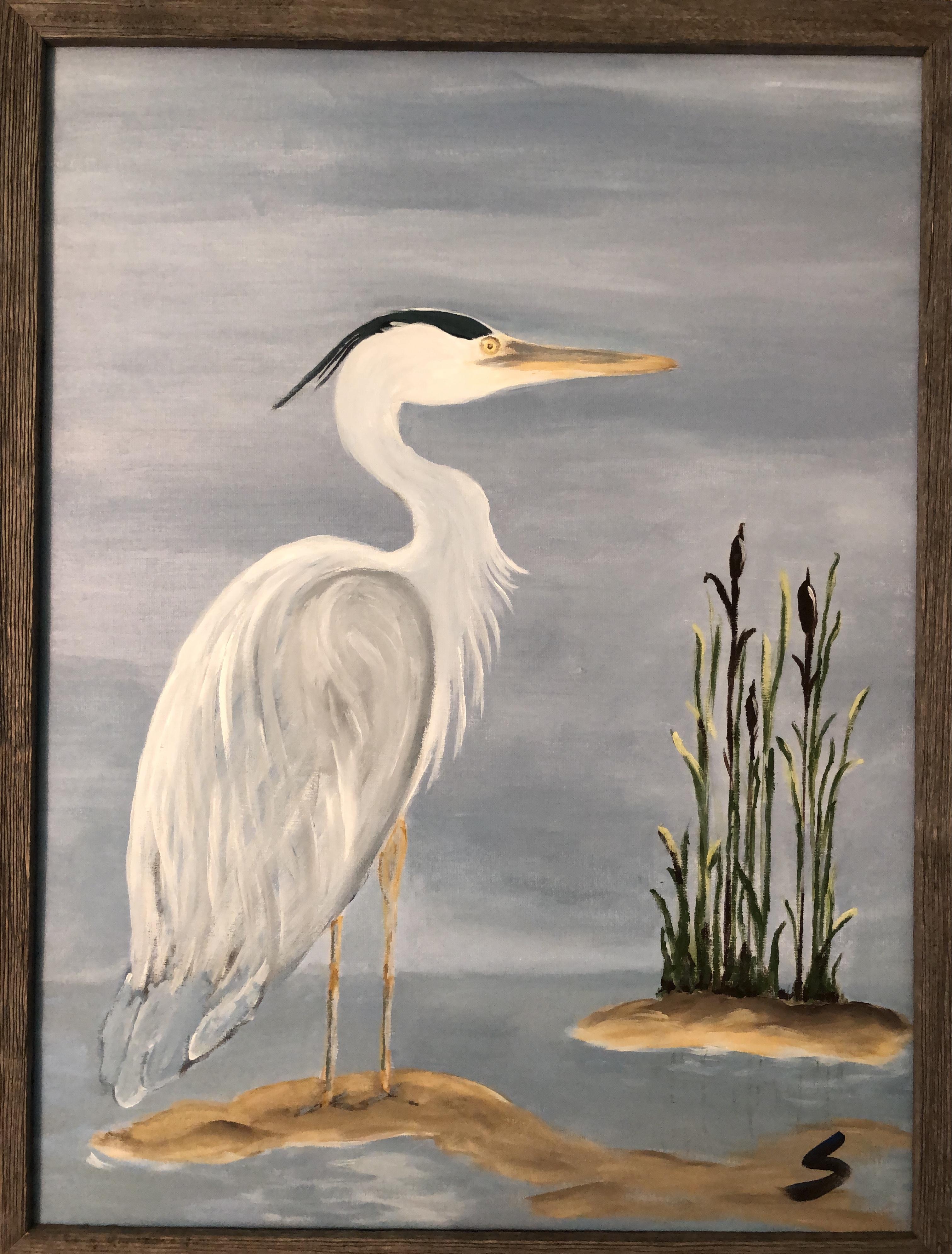 Great Blue Heron facing right
