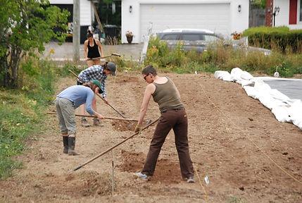 Hayes Farm volunteering.jpg