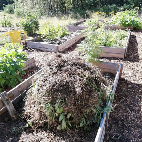Making Hot Compost
