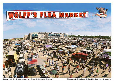 Overview of Wolff's Flea Market at the Allstate Arena, Rosemont