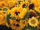 13.FLOWERS.jpg