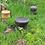 Thumbnail: Mushroom II