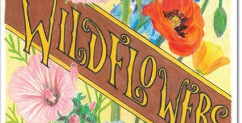 Pollinator Pack - Wildflowers