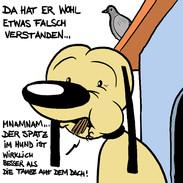 Razli_Spatz im Hund.jpg