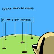 Razli_Soziale_Medien_neue_Nachricht.jpg