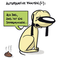 Razli_Alternative-Fakten.jpg