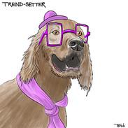 Razli_Trend-Setter.jpg