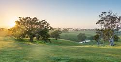 Scrubby Hill Sunrise