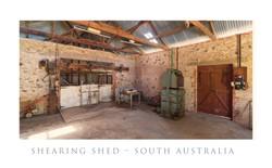 Smyth Road Shearing Shed