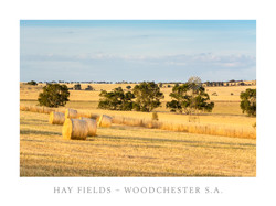 Hay Bales Woodchester