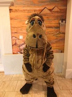 Carlos the Camel