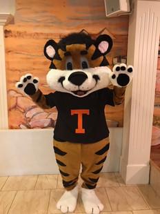 Titus the Tiger