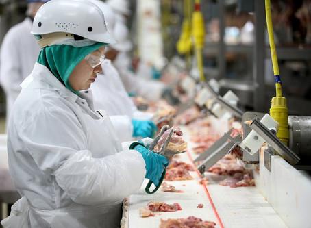 La producción de proteína animal este año crecería 2.4%.
