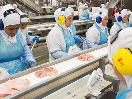 El comercio de pollo al menudeo se está volviendo digital