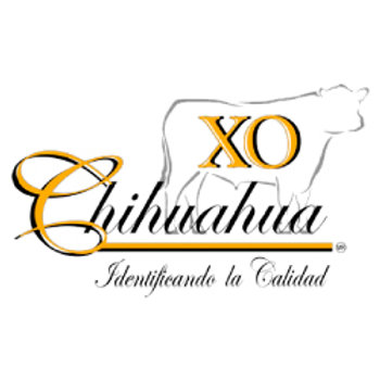 X.O. de Chihuahua, S.A. de C.V.