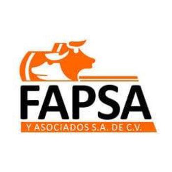 Fapsa y Asociados, S.A. de C.V.