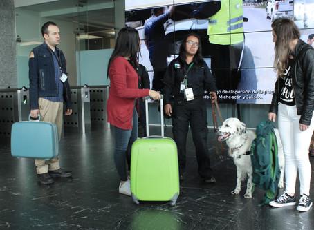 Oficiales del Senasica y unidades caninas al cuidado del patrimonio agroalimentario