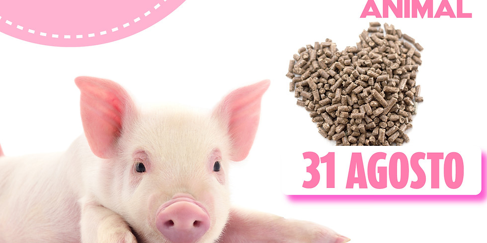 Regulación de productos alimenticios para consumo animal.