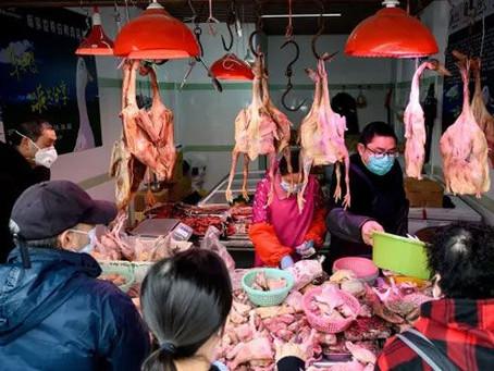 Los precios del pollo vivo en China caen un 25% ante la amplia oferta de carne de cerdo