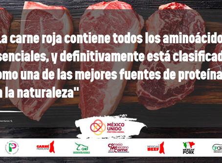 Reiteran el interés nutricional de la carne como fuente de vitaminas y de nutrientes