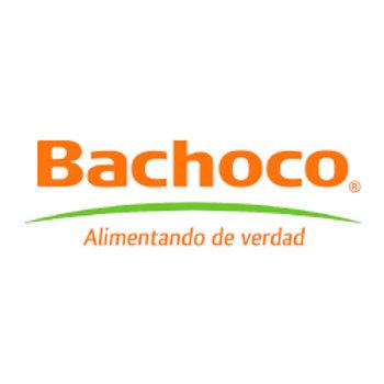 Bachoco Comercial, S.A. de C.V.