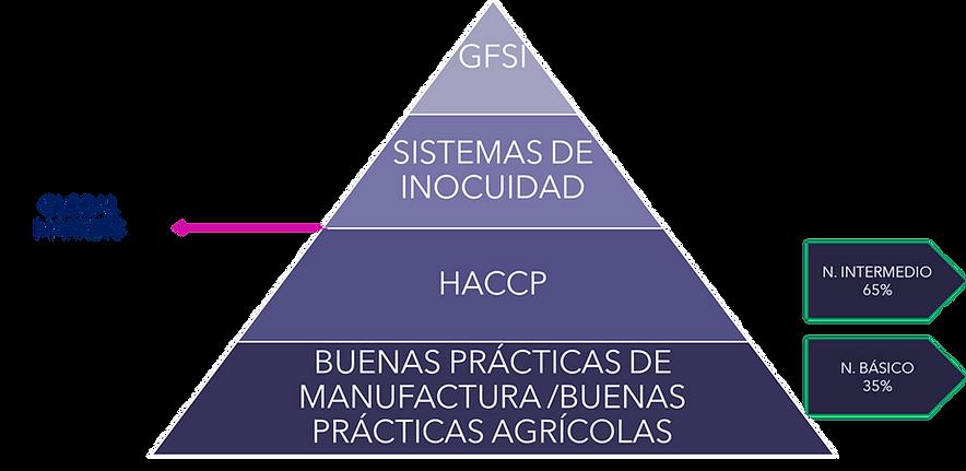 piramide global.png