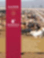 manual_de_BPP-BOV-CONFINAMIENTO-1.png