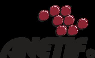 anetif_logo.png