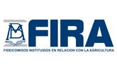 4 FIRA.png