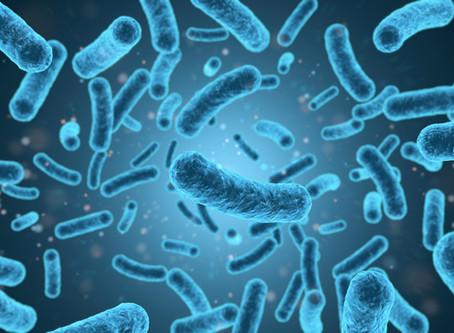 Un avance científico mexicano promete combatir la Listeria monocytogenes