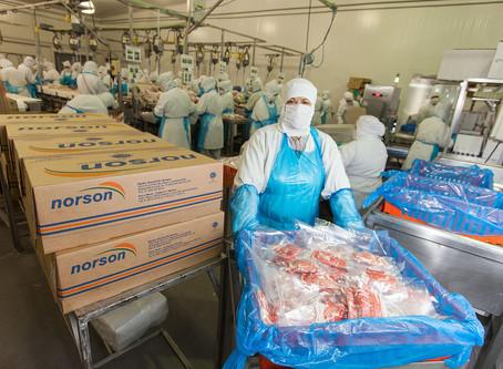 La producción de carne de cerdo en México crecería 4% este año