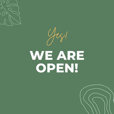 Green Minimal We Are Open Instagram Post.jpg