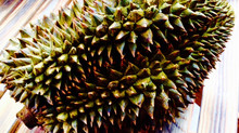 Do You Know Durian ?