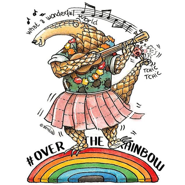 PANGO 20 Rainbow musique.jpg