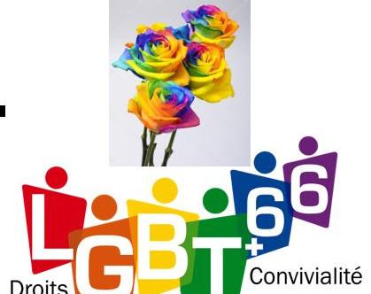 LGBT+66 souhaite un bonne fête des Mamans