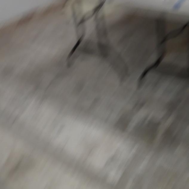 20200423_152244.jpg