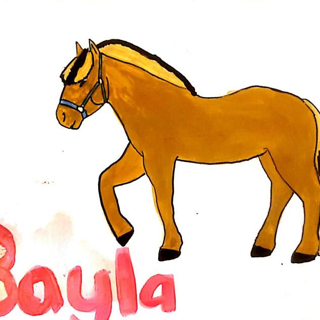 Rachel's Bayla