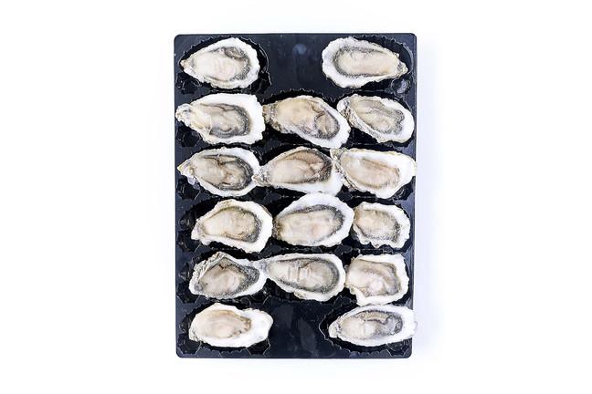Huîtres crues semi-décortiquées surgelées de Bretagne