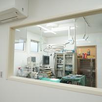 はたま犬猫病院 手術室