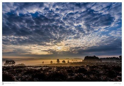 The-golden-mist-of-dawn-712-x-495-limite