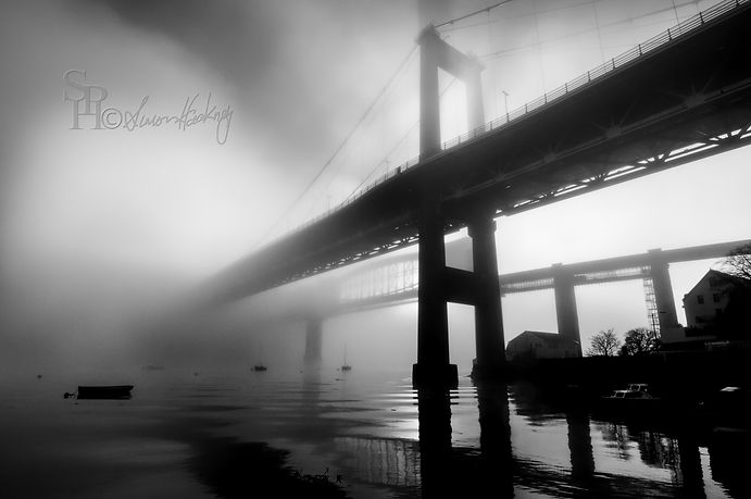 Tamar Fog 3-Edit-2.jpg