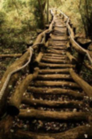 dc205af696bf09409c3f807738681d61--stairw