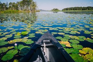 005-Everglades.JPG