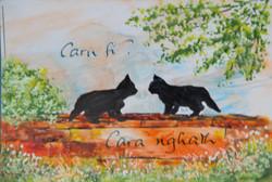 Caru fi / Love me