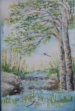 Rocks and Reeds / Creigiau & Chorsennau