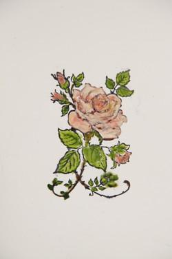 rose / Rhosyn