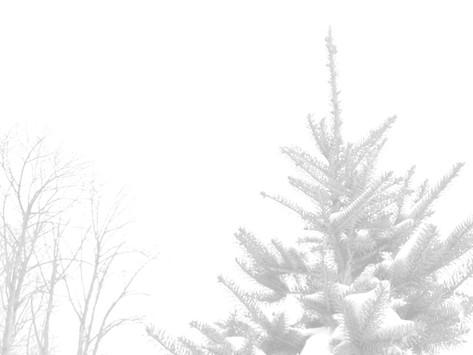a kinder, gentler christmas