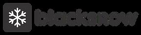 logo-agencia-blacksnow.png